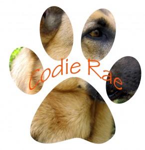 Codie Rae Pawdograph