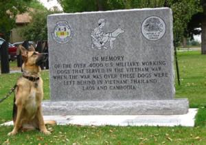 War dog CR